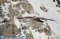 Escursione/Ciaspolata nella Valle delle Aquile – 2 Febbraio 2014