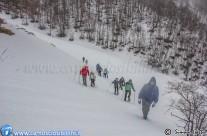 Ciaspolata del 2 Febbraio 2014 in Val di Bove