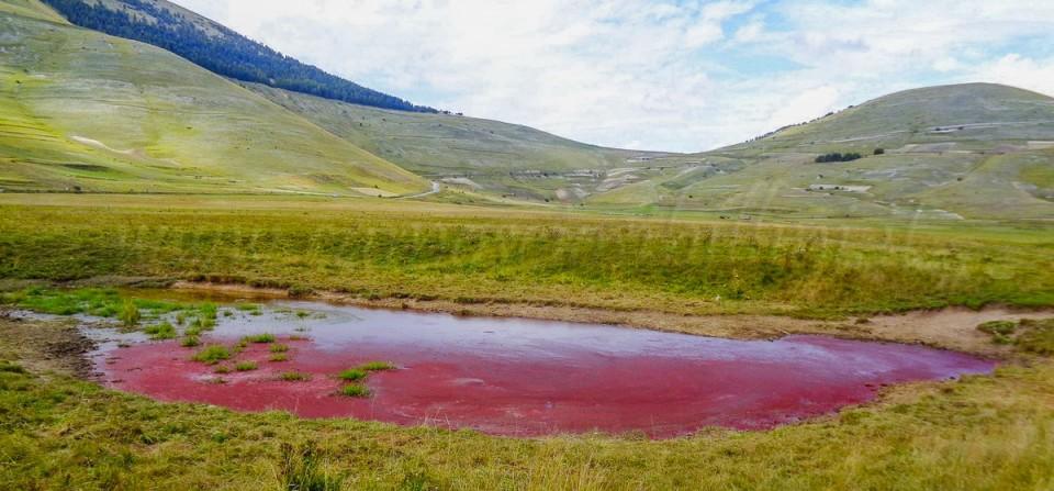 Lo Stagno Rosso dei Sibillini 2014