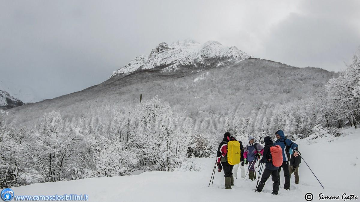 Escursione/Ciaspolata in Val di Panico 08/02/2015 ad Ussita fra Camosci  e Aquile