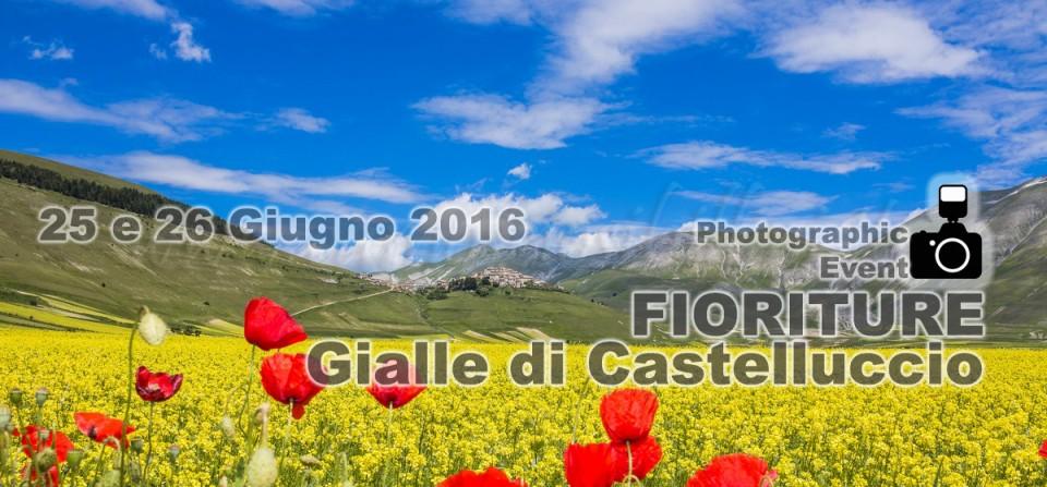 WORKSHOP FIORITURA CASTELLUCCIO 25-26 GIUGNO 2016 – IL GIALLO