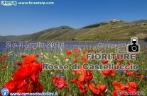 WORKSHOP FIORITURA CASTELLUCCIO 2-3 LUGLIO 2016 – IL ROSSO