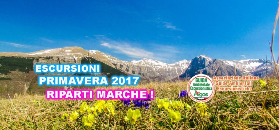 PRIMAVERA 2017 (APRILE-GIUGNO)  ESCURSIONI NEI PARCHI DELLE MARCHE