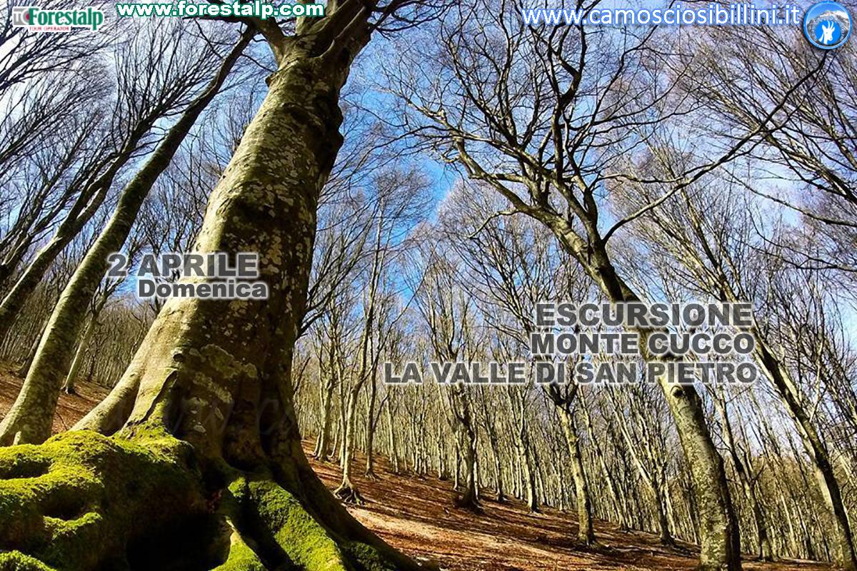 Monte Cucco: La valle di San Pietro da Val di Ranco