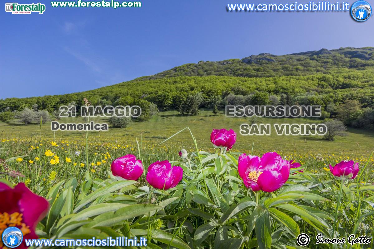 21 Maggio San Vicino