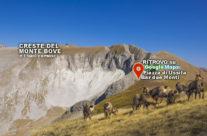 Escursione ai Camosci e le Creste del Monte Bove – Autunno 2017