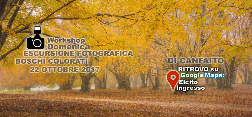 I BOSCHI COLORATI DI CANFAITO – ESCURSIONE CON WORKSHOP FOTOGRAFICO