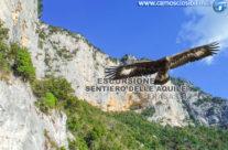 Il Sentiero dell'Aquila, sospesi sulla Gola di Frasassi
