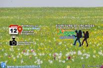 12 Maggio, Tramonto fra le Orchidee