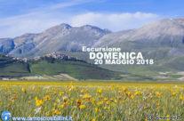 Domenica 20 Maggio 2018 – Escursione alla Fioritura dei Tulipani di Castelluccio
