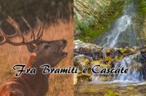 Escursione Fra Bramiti e Cascate 23 e 30 (Mattino) settembre