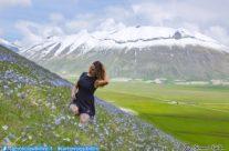 25 Maggio 2019 – fioriture di Linum e Ranuncoli