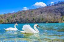 Lago di Boccafornace